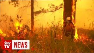 'Too late to leave': Bushfires threaten Australia