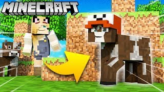 KROWA TROLL?! - ZABAWA W CHOWANEGO W MINECRAFT (Hide and Seek) | Vito vs Bella