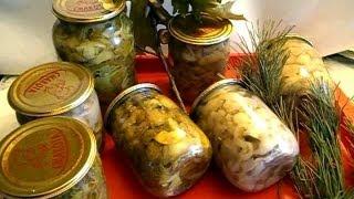 Белые грибы как мариновать, а также подосиновики, подберезовики, бабки, польские грибы