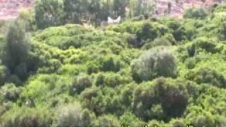 Parc National Al Hoceima
