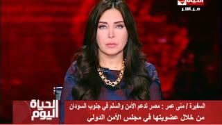 فيديو.. مساعد وزير الخارجية الأسبق: مصر حريصة على أمن جنوب السودان