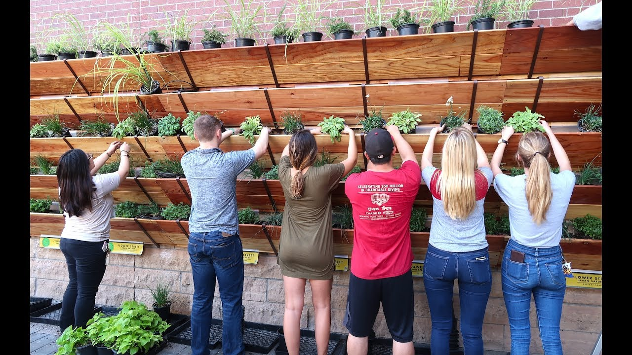 Growing 180 Sq Ft Of Raised Bed Garden On A Wall Or House