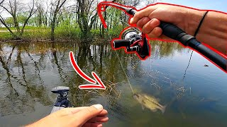 Sight Fishing an ULTRA CLEAR Backwater LOADED w/ Fish!! (Bed Fishing)