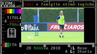 sport - calcio - TG1 28 maggio 2018 - stasera partita ITALIA - ARABIA SAUDITA esordio CT Ancelotti