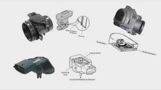 Sensores del Automóvil (Inyección Electrónica de Gasolina)