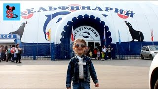 MimiSussi в дельфинарии / шоу дельфинов / Delfin-Show