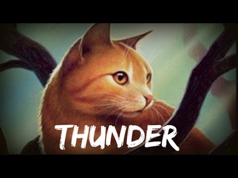 Thunder - Thunderstar - Warrior Cats Dawn...