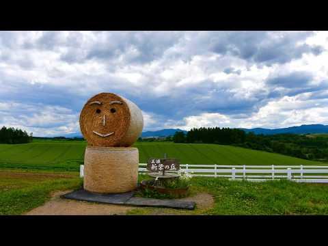 ANAで行く 北海道 富良野・美瑛の旅
