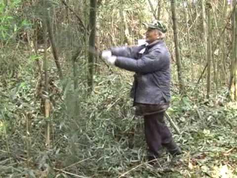 日本刀の切れ味がヤバイw竹を切りまくるw