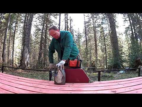 Как выписать лес//деревенские будни