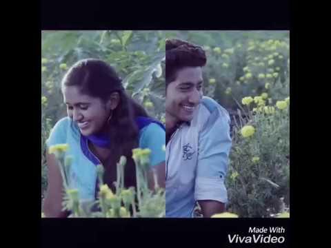 Sairat Dance Funny | Ringtones