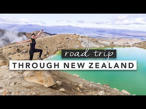 Road Trip Through New Zealand Travel Diary | by Erin Elizabeth