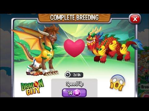 Dragon City: Chinese Dragon vs Ney Dragon [EXCLUSIVE BREEDING]