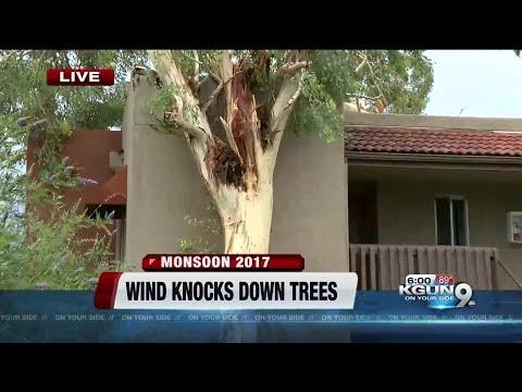 Storm pounds Tucson