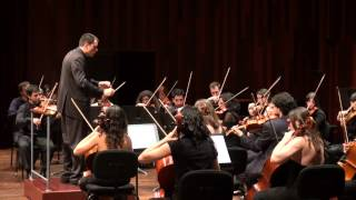 Beethoven 7th Symphony - 2nd movement - Allegretto