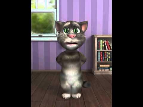 Hunny bunny song- Tom Cat