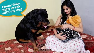 Dog protecting baby||fake baby prank video||funny dog videos.