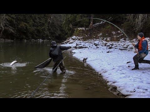 STEELHEAD FLY FISHING WINTER RUN SKEENA BC | CAPTAIN QUINN