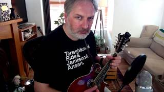The Wedding Reel (MacLeod's Farewell) on mandolin