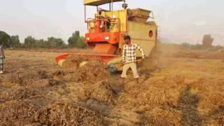 Punni Groundnut Harvester