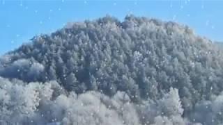 Краєвиди зимової Кременеччини