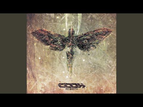 Angel of Shit (Original Mix)