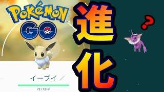 イーブイ色違い進化ガチャ!【ポケモンGO】さとちんjapan Pokémon GO