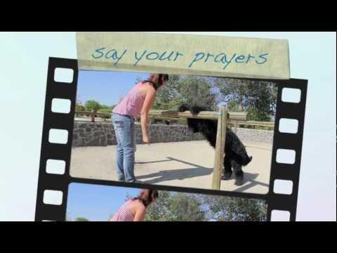 Recent dog tricks by Elliot the Briard
