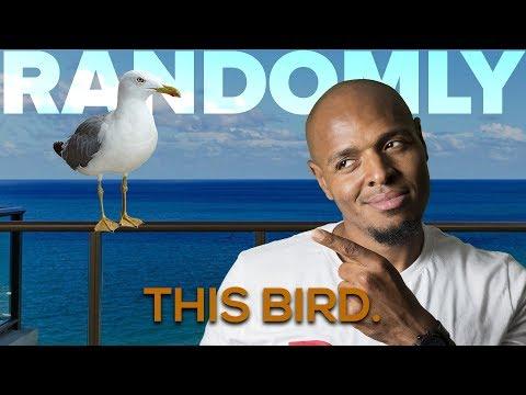 Tony Baker Randomly - This Bird Out Here