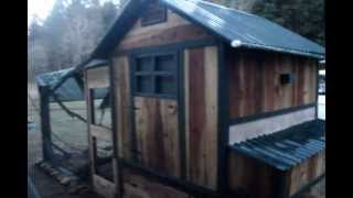 Raising Chickens - A Peek Inside The Chicken Coop.wmv