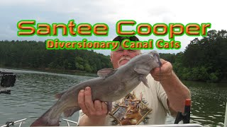 How to Catch Santee Cooper Catfishing Trip 4/14