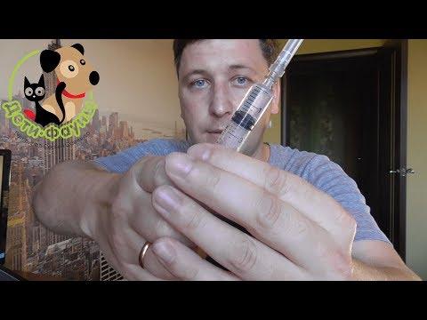 Как набрать шприц без воздуха
