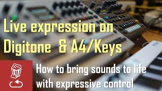 Live expression on DIGITONE and ANALOG FOUR/KEYS: How to bring sounds to life