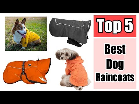 Hurtta Pet Collection Torrent Coat for Dogs - Top 5 Best Dog Raincoats Reviews