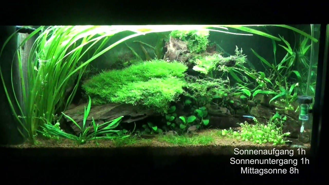 Led Aquariumbeleuchtung Mit Simulation Youtube