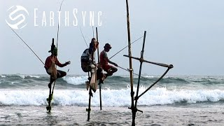 "A New Day - A song from Sri Lanka | From the ""Laya Project"" Film"