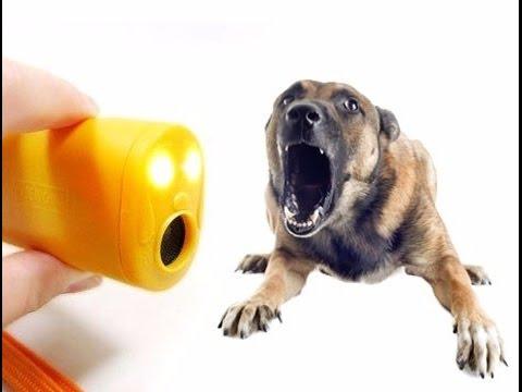 Ультрозвукой отпугиватель собак отпугиватели змей модель б купить