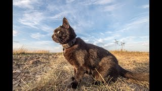Melbourne to Outback Queensland with an Adventure Cat
