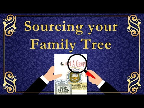 Sourcing Your Family Tree With Ancestry DNA