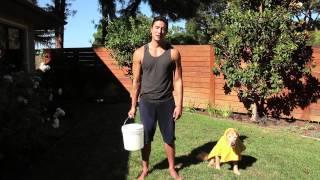 Daniel Henney ICE BUCKET CHALLENGE