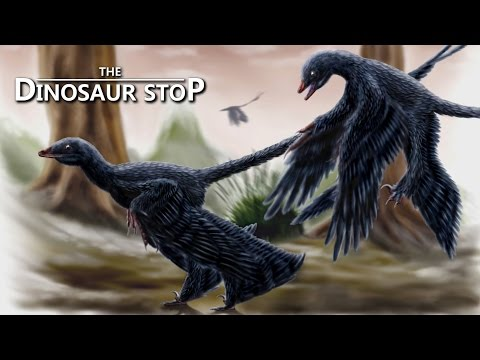 This Week in Dinosaurs: North America's Last Giant Sauropod and The Jurassic Park Podcast
