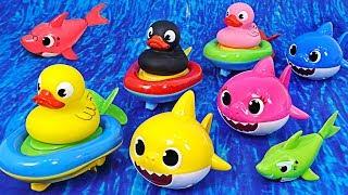 오리 보트와 상어가족 함께 아쿠아리움에서 수영해요! |…