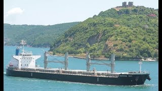 Ship Bulk Carrier SERENE SKY Floating at Sea