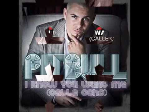 pitbull - i know you want me calle ocho [HQ]