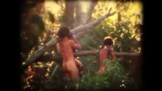 NUNCA FUI A UN PARQUE DE DIVERSIONES - Abrazos de rio manso (2014)