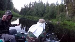Тут без мата не обійтися))) Володін подъязок.Риболовля на півночі.Прикол.Summer fishing.Spinning.