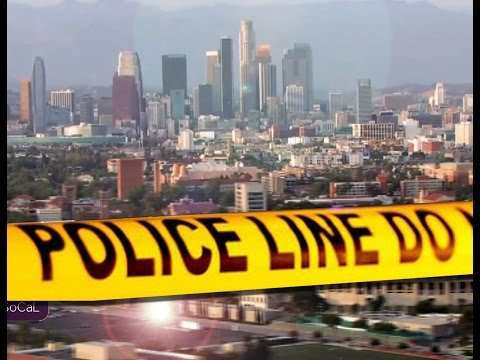 What Is Causing All the New Crime in Los Angeles