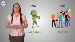 Русский язык 5 класс. Имена существительные: одушевленные и неодушевленные