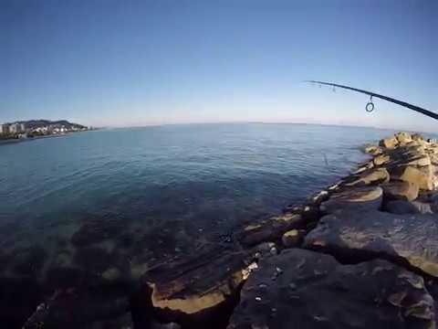 Pescatella Moletto Foce Tesino Grottammare (San Benedetto Del Tronto) Pesca Spinning