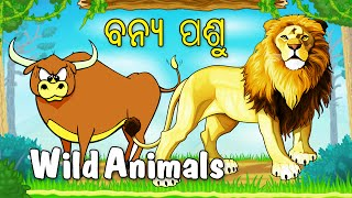 Let's Learn About Wild Animals - Preschool Learning in Oriya | Types Of Domestic Animals